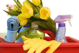 Homes for Sale in Payson AZ Cleaning Tips