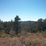Land for Sale Mazatza Mountain Airpark