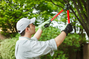 payson-realtor-spring-maintenance-tips